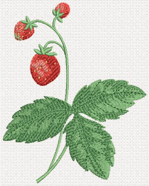 10347 Strawberry machine embroidery No3