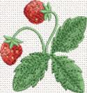10350 Strawberry machine embroidery No6